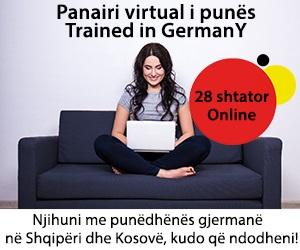 Panairi virtual i punes